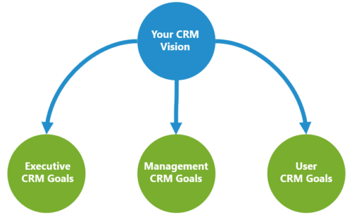 CRM Vision supported by goals