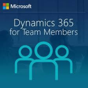 Important Changes to Dynamics 365 Team Member Licences
