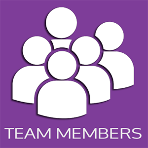 A Quick Guide to Microsoft Dynamics 365 Team Member Licences